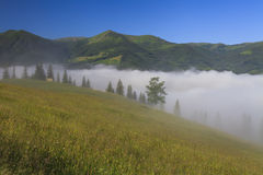Matin brumeux dans les montagnes Photos stock