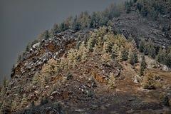 Matin brumeux dans les montagnes d'Altai Photographie stock libre de droits