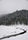 Matin brumeux de l'hiver images stock