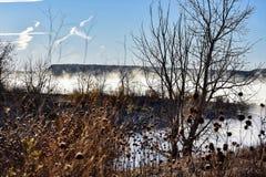 Matin brumeux de lac image stock