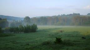 Matin brumeux en automne Image libre de droits