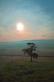 Matin brumeux en vallée de hache Photographie stock libre de droits