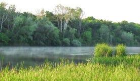 Matin brumeux sur le fleuve Image libre de droits