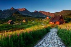 Matin calme ensoleillé sur la prairie de montagne avec les huttes et le chemin en pierre images libres de droits