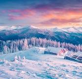 Matin coloré d'hiver dans les montagnes carpathiennes Images stock