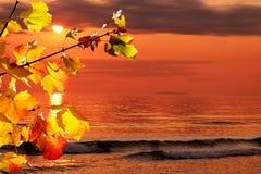 Matin d'automne à l'océan Images stock