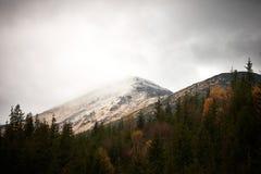 Matin d'automne dans les montagnes carpathiennes Image libre de droits