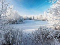 Matin d'hiver d'espace libre de Cristal Images libres de droits