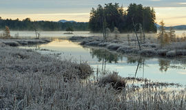 Matin d'hiver dans les montagnes d'Adirondack Image libre de droits