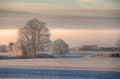 Matin d'hivers de Cotswolds Images libres de droits