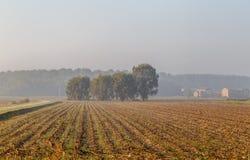 Matin dans la province italienne d'Emilia Romagna, un champ Image libre de droits