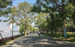 Matin dans la tache scénique de tourisme écologique est de lac wuhan Photo libre de droits