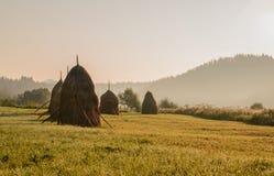 Matin dans les Carpathiens Photos libres de droits