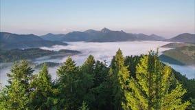 Matin de brume de lever de soleil au-dessus de forêt et de laps de temps brumeux de vallée de montagne Arbres et brouillard se dé banque de vidéos