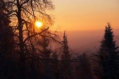 Matin de l'hiver Image libre de droits