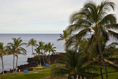 Matin de paradis d'Hawaï images libres de droits