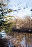 Matin de rivière Images stock
