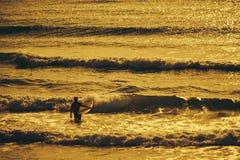 Matin du ` s de surfer Photos stock
