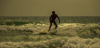 Matin du ` s de surfer Photographie stock libre de droits