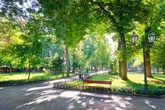 Matin en parc de ville, à lumière du soleil lumineuse et ombres, saison d'été, beau paysage Image libre de droits