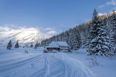 Matin en vallée neigeuse de montagne Photo stock