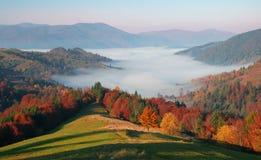 Matin ensoleillé d'automne dans les montagnes Image stock