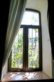 Matin ensoleillé dans la fenêtre photographie stock libre de droits