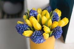 Matin ensoleillé de source Groupe de jacinthes bleues et de tulipes jaunes sur la table blanche Présent pour une fille Fleurit le Photo stock