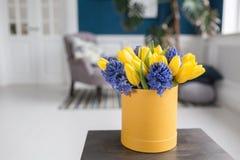 Matin ensoleillé de source Groupe de jacinthes bleues et de tulipes jaunes sur la table en bois Présent pour une fille Fleurit le Image libre de droits