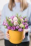 Matin ensoleillé de source Jeune femme heureuse tenant un beau groupe de jacinthes roses et de tulipes violettes dans des ses mai Photo libre de droits