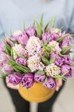 Matin ensoleillé de source Jeune femme heureuse tenant un beau groupe de jacinthes roses et de tulipes violettes dans des ses mai Photo stock