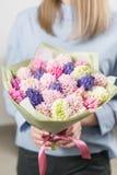 Matin ensoleillé de source Jeune femme heureuse tenant un beau groupe de jacinthes roses et violettes dans des ses mains Présent  Photo libre de droits