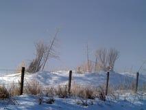 Matin et clôture de l'hiver Photo stock