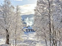 Matin froid de l'hiver photos stock