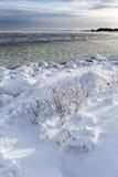 Matin froid en mer Photo stock