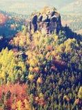 Matin froid en nature automnale à début novembre Matin coloré de chute Photographie stock