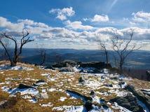 Matin froid et brumeux tôt à l'herbe de gelée sur la montagne, vue au-dessus d'herbe congelée et rochers aux arbres et à la colli Photographie stock