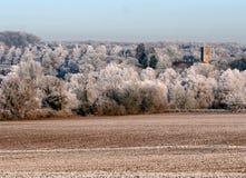 Matin froid et givré, Angleterre. LE R-U Images libres de droits