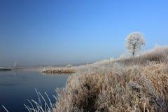 Matin gelé sur la rivière Photos stock