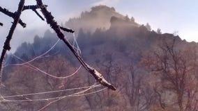 Matin givré de haut désert de brouillard d'automne photo libre de droits