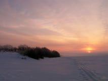 Matin givré de l'hiver. Images libres de droits
