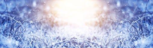 Matin givré de l'hiver Fond de neige d'hiver, couleur bleue, flocons de neige, lumière du soleil, macro illustration libre de droits