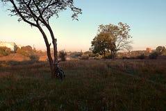 Matin par la rivière, paysage avec une bicyclette images stock
