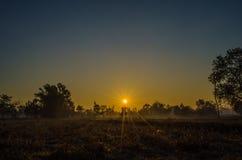 Matin Sun Photo libre de droits