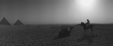 Matin Sun au-dessus des pyramides de Gizeh Egypte pendant l'équitation de chameau de lever de soleil de pyramides photo libre de droits
