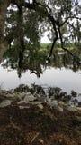 Matin sur une rivière Photo libre de droits