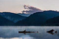 Matin tranquille à un lac Images libres de droits