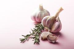 Matingredienser: Vitlök och rosmarinar Royaltyfri Bild