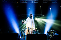 Matisyahu concert Royalty Free Stock Photos