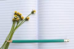 Matita dei fiori sul taccuino Fotografia Stock